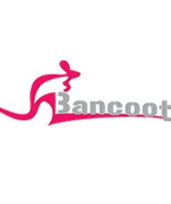Vòi chậu bếp Bancoot