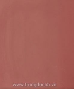 Gạch đỏ Gốm Mỹ 40 lát sân