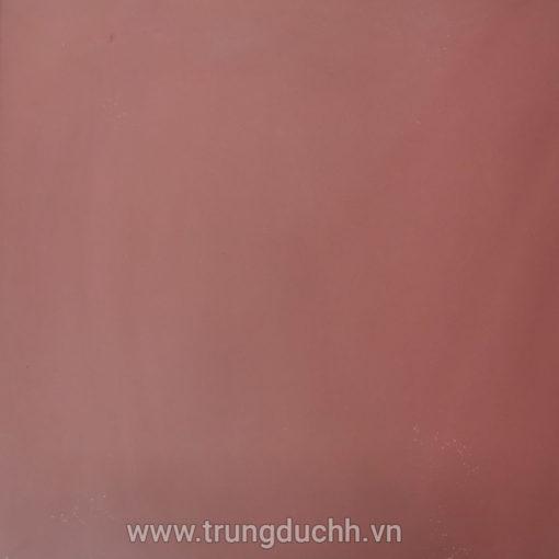 Gạch đỏ Gốm Mỹ 50 lát sân